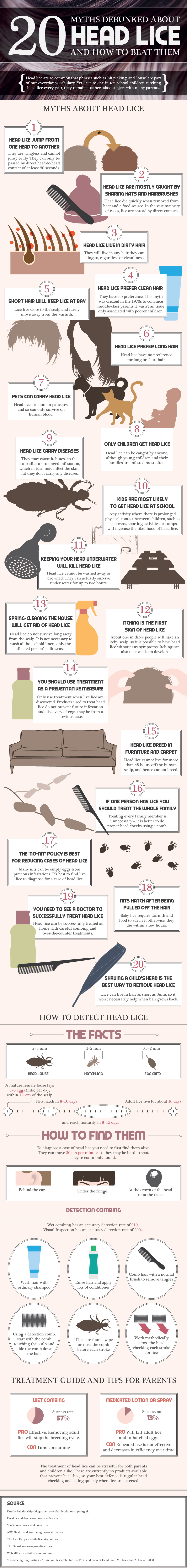 Myths about head lice infographic