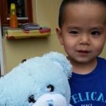Teddy Bears Picnic Clonsilla